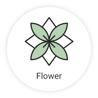 flower icon - Home
